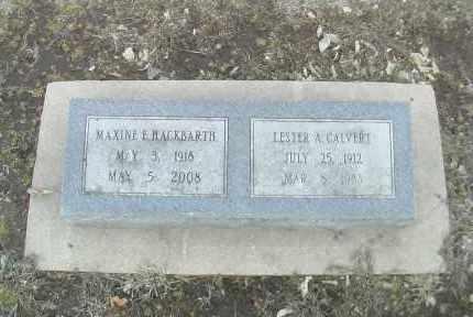 HAWKINS HACKBARTH, MAXINE ELLEN - Gage County, Nebraska | MAXINE ELLEN HAWKINS HACKBARTH - Nebraska Gravestone Photos