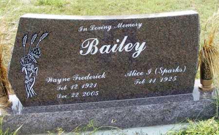 BAILEY, WAYNE FREDERICK - Garden County, Nebraska | WAYNE FREDERICK BAILEY - Nebraska Gravestone Photos