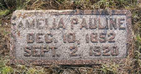 JOHNSON, AMELIA PAULINE - Garden County, Nebraska | AMELIA PAULINE JOHNSON - Nebraska Gravestone Photos