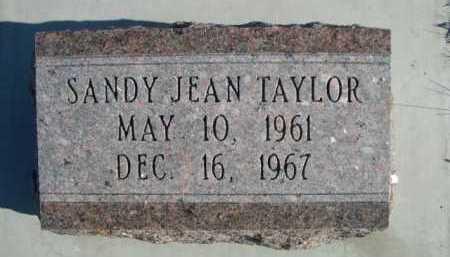 TAYLOR, SANDY JEAN - Garden County, Nebraska | SANDY JEAN TAYLOR - Nebraska Gravestone Photos