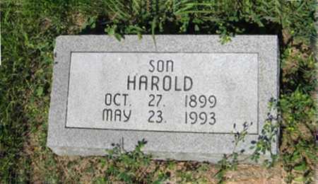 RASMUSSEN, HAROLD - Hamilton County, Nebraska | HAROLD RASMUSSEN - Nebraska Gravestone Photos