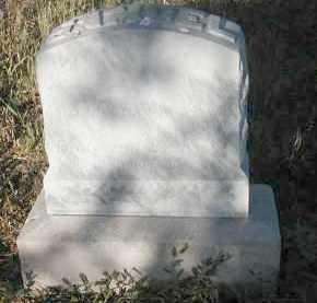SPRINGS, SAMUEL - Hamilton County, Nebraska | SAMUEL SPRINGS - Nebraska Gravestone Photos