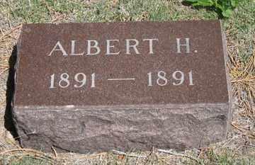 IRVINE, ALBERT H. - Hitchcock County, Nebraska | ALBERT H. IRVINE - Nebraska Gravestone Photos