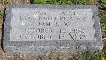 JAMES, JOAN ELAINE - Hitchcock County, Nebraska | JOAN ELAINE JAMES - Nebraska Gravestone Photos