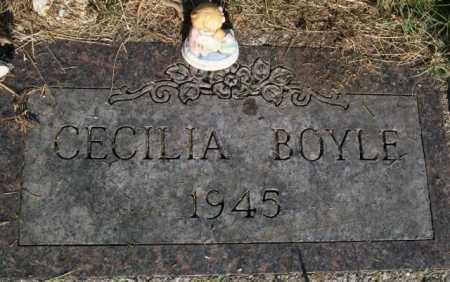 BOYLE, CECILIA - Holt County, Nebraska | CECILIA BOYLE - Nebraska Gravestone Photos