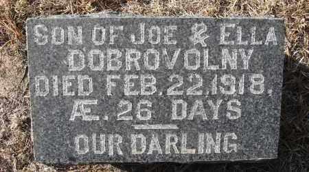 DOBROVOLNY, BABY - Holt County, Nebraska | BABY DOBROVOLNY - Nebraska Gravestone Photos