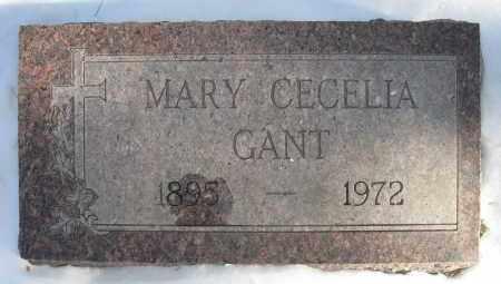 GANT, MARY CECELIA - Holt County, Nebraska   MARY CECELIA GANT - Nebraska Gravestone Photos