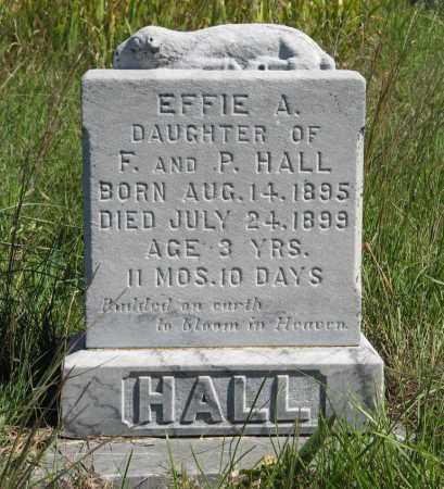 HALL, EFFIE A. - Holt County, Nebraska | EFFIE A. HALL - Nebraska Gravestone Photos