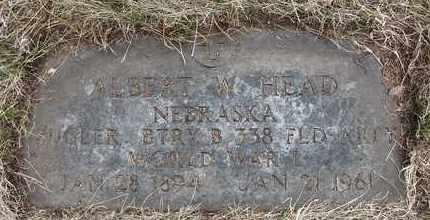 HEAD, ALBERT W - Holt County, Nebraska | ALBERT W HEAD - Nebraska Gravestone Photos