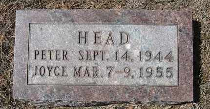 HEAD, PETER - Holt County, Nebraska | PETER HEAD - Nebraska Gravestone Photos