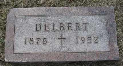 JOHNSON, DELBERT - Holt County, Nebraska | DELBERT JOHNSON - Nebraska Gravestone Photos