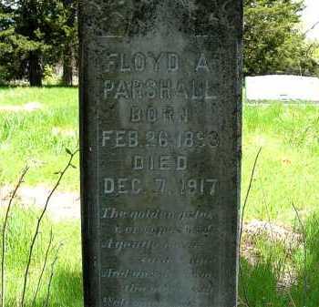 PARSHALL, FLOYD A. - Holt County, Nebraska | FLOYD A. PARSHALL - Nebraska Gravestone Photos