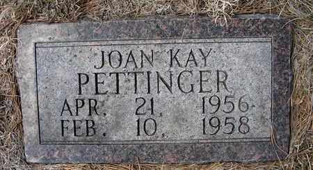 PETTINGER, JOAN KAY - Holt County, Nebraska   JOAN KAY PETTINGER - Nebraska Gravestone Photos