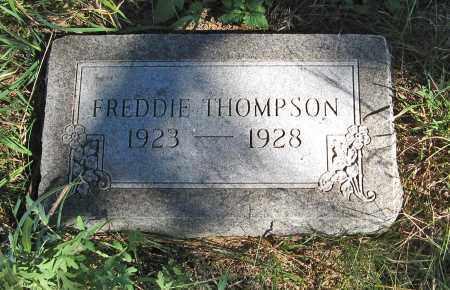 THOMPSON, FREDDIE - Holt County, Nebraska | FREDDIE THOMPSON - Nebraska Gravestone Photos