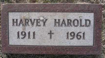 THOMPSON, HARVEY HAROLD - Holt County, Nebraska | HARVEY HAROLD THOMPSON - Nebraska Gravestone Photos