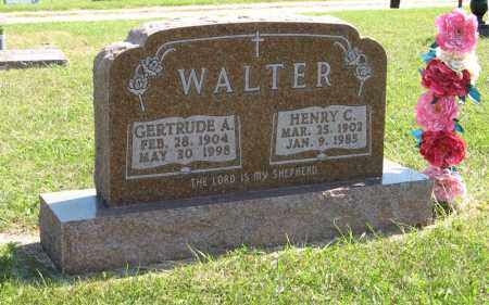 WALTER, HENRY C. - Holt County, Nebraska | HENRY C. WALTER - Nebraska Gravestone Photos