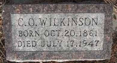WILKINSON, CHARLES O - Holt County, Nebraska | CHARLES O WILKINSON - Nebraska Gravestone Photos