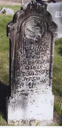 BROEDER, T. GEORGE - Jefferson County, Nebraska   T. GEORGE BROEDER - Nebraska Gravestone Photos