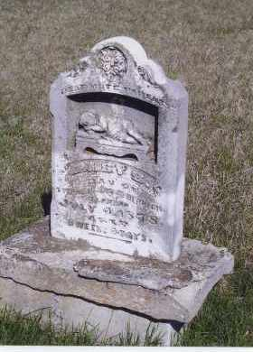 HERRICK, DAISY S. - Jefferson County, Nebraska | DAISY S. HERRICK - Nebraska Gravestone Photos