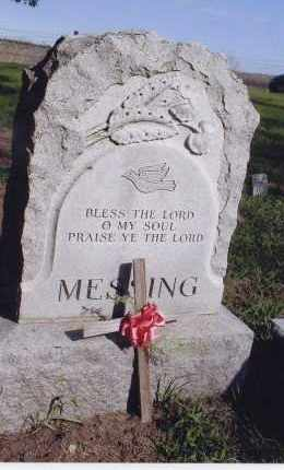MESSING, FAMILY MARKER - Jefferson County, Nebraska | FAMILY MARKER MESSING - Nebraska Gravestone Photos