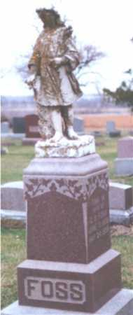 FOSS, CHARLES - Johnson County, Nebraska | CHARLES FOSS - Nebraska Gravestone Photos