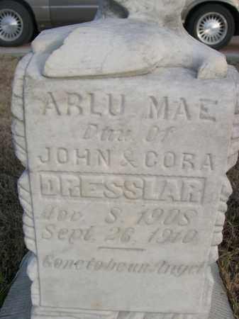 DRESSLAR, ARLU MAE - Keith County, Nebraska | ARLU MAE DRESSLAR - Nebraska Gravestone Photos