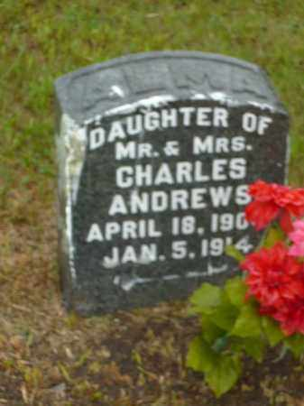 ANDREWS, ALMA - Keya Paha County, Nebraska | ALMA ANDREWS - Nebraska Gravestone Photos