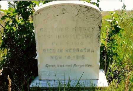 AUBREY, GASTON R. - Keya Paha County, Nebraska | GASTON R. AUBREY - Nebraska Gravestone Photos