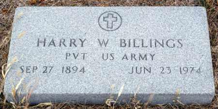 BILLINGS, HARRY W. - Keya Paha County, Nebraska | HARRY W. BILLINGS - Nebraska Gravestone Photos