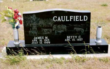 CAULFIELD, JAMES M - Keya Paha County, Nebraska | JAMES M CAULFIELD - Nebraska Gravestone Photos
