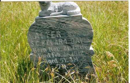 DAVIS, WALTER - Keya Paha County, Nebraska | WALTER DAVIS - Nebraska Gravestone Photos