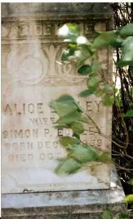 ECKLEY, ALICE - Keya Paha County, Nebraska | ALICE ECKLEY - Nebraska Gravestone Photos