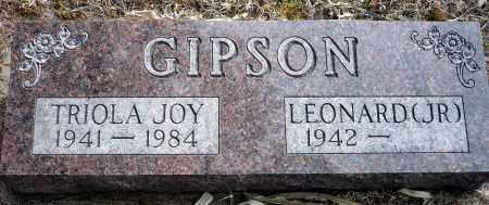GIPSON, LEONARD JR. - Keya Paha County, Nebraska | LEONARD JR. GIPSON - Nebraska Gravestone Photos