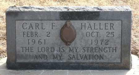 HALLER, CARL FREDERICK - Keya Paha County, Nebraska | CARL FREDERICK HALLER - Nebraska Gravestone Photos