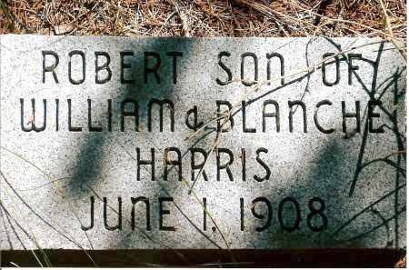 HARRIS, ROBERT - Keya Paha County, Nebraska | ROBERT HARRIS - Nebraska Gravestone Photos