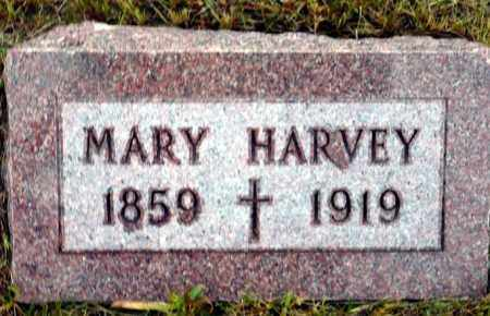 HARVEY, MARY - Keya Paha County, Nebraska | MARY HARVEY - Nebraska Gravestone Photos