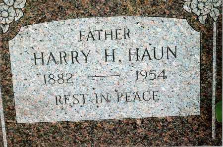 HAUN, HARRY H. - Keya Paha County, Nebraska | HARRY H. HAUN - Nebraska Gravestone Photos