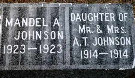 JOHNSON, DAUGHTER - Keya Paha County, Nebraska | DAUGHTER JOHNSON - Nebraska Gravestone Photos
