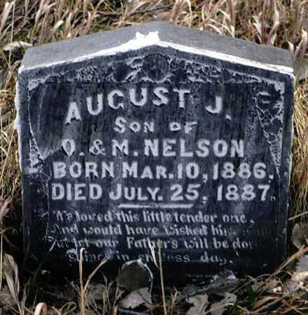 NELSON, AUGUST J. - Keya Paha County, Nebraska | AUGUST J. NELSON - Nebraska Gravestone Photos