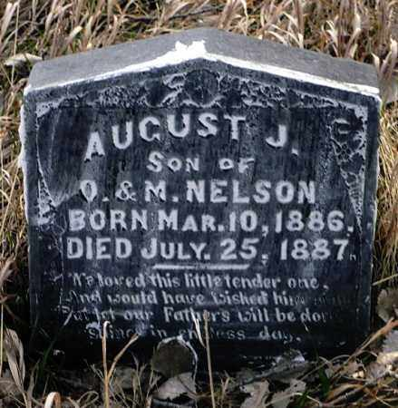 NELSON, AUGUST J. - Keya Paha County, Nebraska | AUGUST J. NELSON - Nebraska Gravestone Photos