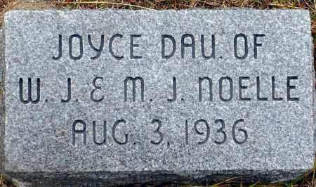 NOELLE, JOYCE - Keya Paha County, Nebraska | JOYCE NOELLE - Nebraska Gravestone Photos