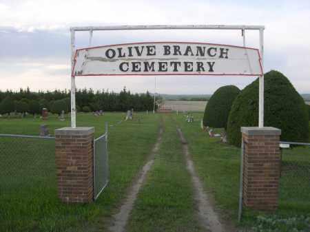 *OLIVE BRANCH CEMETERY, ENTRANCE TO - Keya Paha County, Nebraska | ENTRANCE TO *OLIVE BRANCH CEMETERY - Nebraska Gravestone Photos