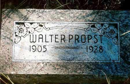 PROPST, WALTER - Keya Paha County, Nebraska   WALTER PROPST - Nebraska Gravestone Photos