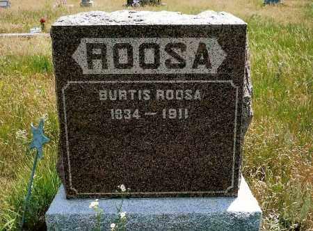 ROOSA, BURTIS - Keya Paha County, Nebraska | BURTIS ROOSA - Nebraska Gravestone Photos