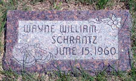 SCHRANTZ, WAYNE WILLIAM - Keya Paha County, Nebraska | WAYNE WILLIAM SCHRANTZ - Nebraska Gravestone Photos