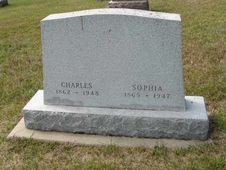 ANDERSON, SOPHIA - Knox County, Nebraska | SOPHIA ANDERSON - Nebraska Gravestone Photos