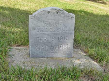ANDERSON, GOLDIE - Knox County, Nebraska | GOLDIE ANDERSON - Nebraska Gravestone Photos