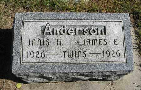 ANDERSON, JANIS H. - Knox County, Nebraska   JANIS H. ANDERSON - Nebraska Gravestone Photos
