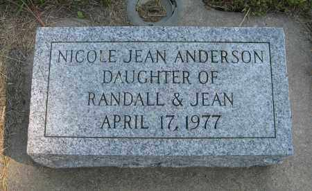 ANDERSON, NICOLE JEAN - Knox County, Nebraska | NICOLE JEAN ANDERSON - Nebraska Gravestone Photos