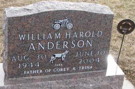 ANDERSON, WILLIAM HAROLD - Knox County, Nebraska | WILLIAM HAROLD ANDERSON - Nebraska Gravestone Photos